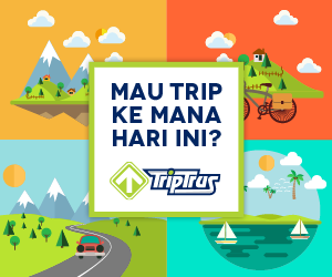 TripTrus.com
